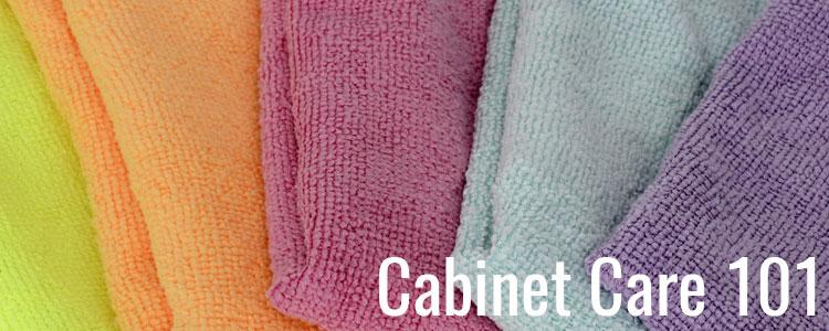 Blog 5 Cabinet Care 101 Header