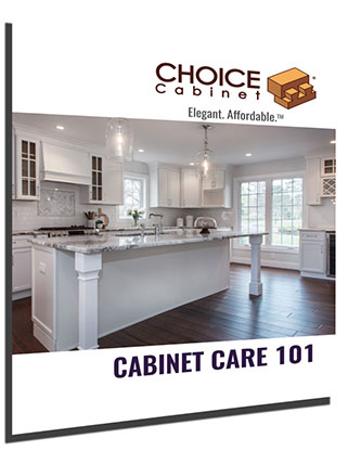 Cabinet Care 101 Cover