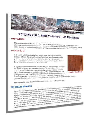 Protecting Your Cabinets from Low Temps and Humidity eBook