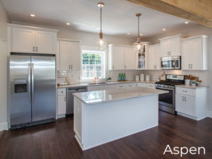 Kitchen Styles Contemporary Aspen