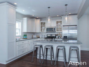 Luxury Kitchens Aspen